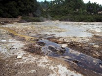 """Frying pan flat"", parc thermal de Wai-o-tapu"