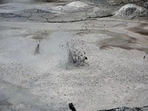 """Explosion de boue bouillante à """"Mud pools"""", Wai-o-tapu"""