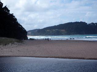 Les petits trous vus de loin à Hot Water Beach