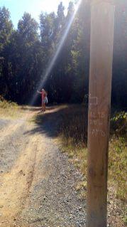 Après un faux départ à droite, on remarque une indication sur un poteau... C'est à gauche pour la cascade El Claro !
