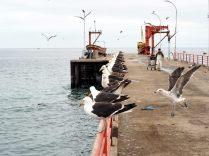 La jetée à Valparaiso