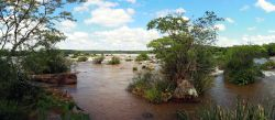 La rivière, avant de se jeter dans les chutes, semble bien calme...