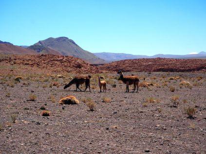Quebrada Yerba Buena