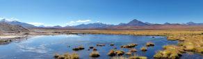 Une laguna sur la route entre les geysers de Tatio et San Pedro de Atacama