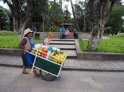 Au parc Simon Bolivar, Sucre