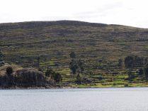 Cultures en terrasse sur les îles du lac Titicaca