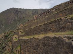 Site archéologique Inca de Ollantaytambo. Terrasses aménagées
