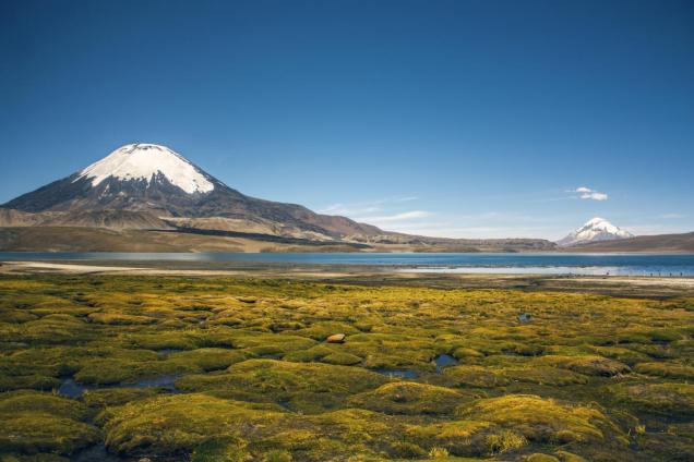 Vue sur le volcan Parinacota (à gauche) et le volcan Sajama (à droite) depuis le lac Chungara, dans le parc national Lauca au Chili (juste à la frontière entre le Chili et la Bolivie). Photo par Pablo Montecinos, licence CC BY-SA 4.0