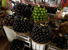 Variétés d'avocats au marché de Sucre