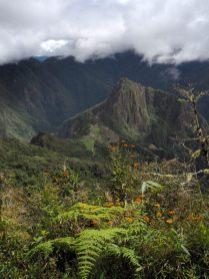 """Vue sur le Wayna Picchu depuis la """"Montana"""" Machu Picchu"""