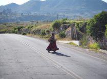 Une habitante traverse la route, Canyon de colca