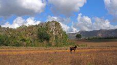 Panorama, Vinales