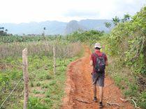 Balade à pied dans la campagne de Vinales