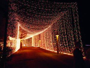 The Tunnel of Lights was at least 300 feet long.  All the guests walked through here as the start of the LOT.  Very impressive!!