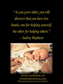 """""""As you grow older, you will discover that you have two hands, one for helping yourself, the other for helping others."""" – Audrey Hepburn. One of the quotes which is included in the book """"On Becoming a Lemonade Maker"""" by Tamara Kulish."""
