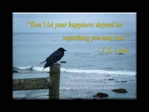 """""""Don't let your happiness depend on something you may lose."""" – C.S. Lewis. One of the quotes which is included in the book """"On Becoming a Lemonade Maker"""" by Tamara Kulish. This quote by C.S. Lewis speaks to the transitory things in our lives we can put too much importance on, and which ultimately can give us a false sense of security and happiness. I love the way the pensive mood of this bird in nature contrasts with the quote. On one hand nature is one of the constants which we can let our soul loose in, and on the other hand, the fleeting position of a bird reinforces the thought of temporariness of riches, fame, social position and other things we seek our identity from! This lone bird braved the chilly coastal winds blowing in Northern California on an overcast day."""