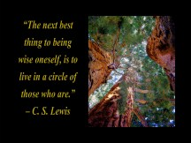 """""""The next best thing to being wise oneself, is to live in a circle of those who are."""" – C. S. Lewis. One of the quotes which is included in the book """"On Becoming a Lemonade Maker"""" by Tamara Kulish."""