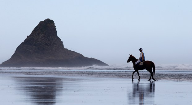 AUCKLAND, NEW ZEALAND - APRIL 08: Ray Hooper riding Toss Woollaston cools off during the Karekare Beach Races on April 8, 2017 in Auckland, New Zealand. The event on Auckland's West Coast raises funds for Lone Kauri School and the Karekare Surf Lifesaving Club. (Photo by Phil Walter/Getty Images)