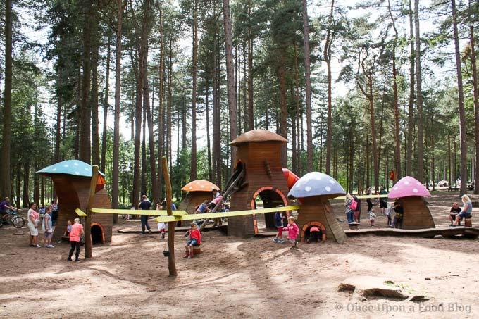 Why not enjoy the great outdoors this summer? We did with a barbeque at Sherwood Pines Forest Park.