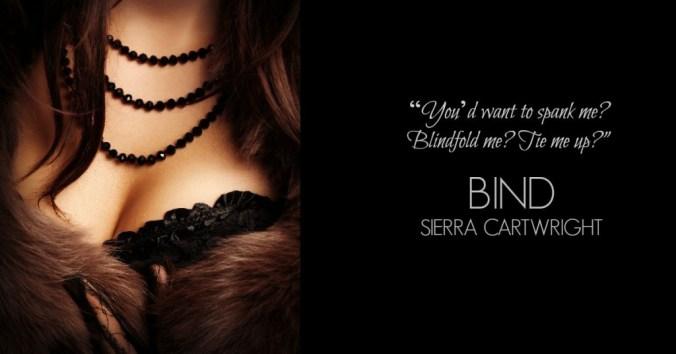 Bind Teaser 1