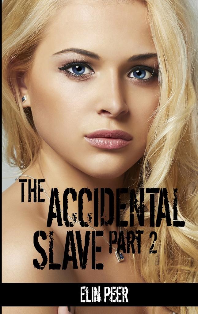 Accidental Slave 2 Cover