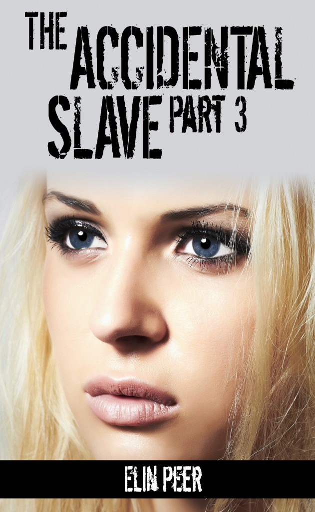 Accidental Slave 3 Cover