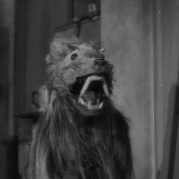 The tail-wagging terror of THE KILLER SHREWS (1959)