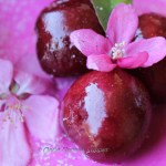 Cherry Fritters -- of cherries, cherry blossom and cheer!