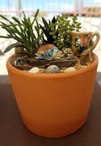 Growing Succulents is Plantastic