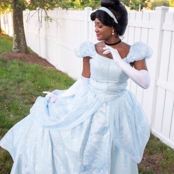 Brandy Cinderella