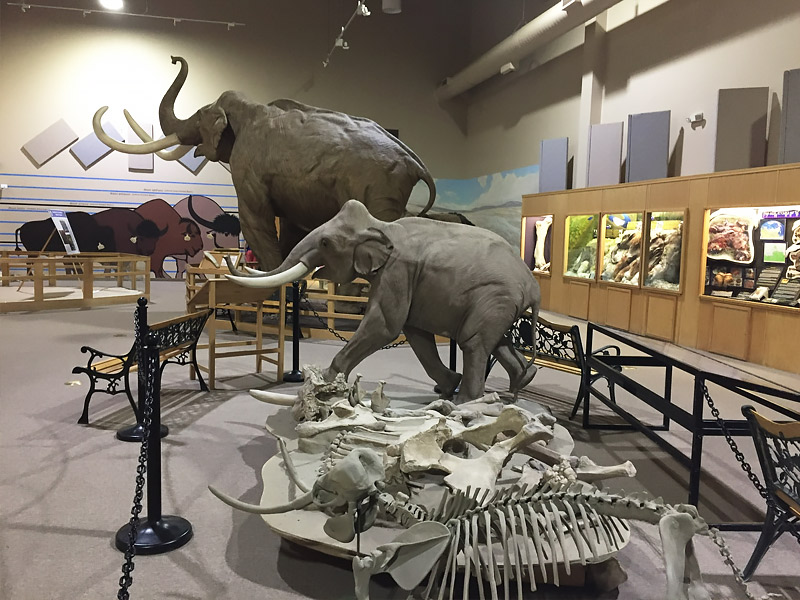 Mammoth Site Museum Exhibit Hall