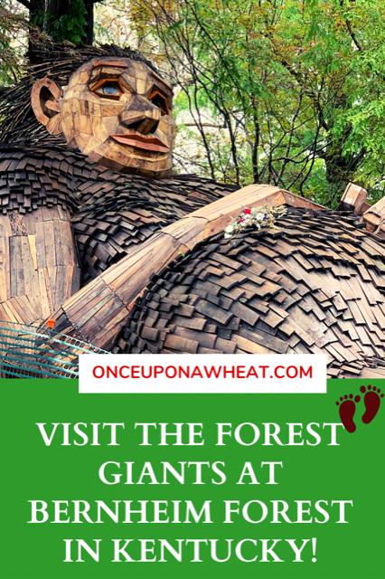 Bernheim Forest Giants