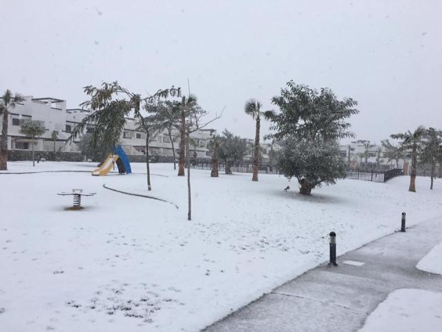 Snow on Condado de Alhama January 2017