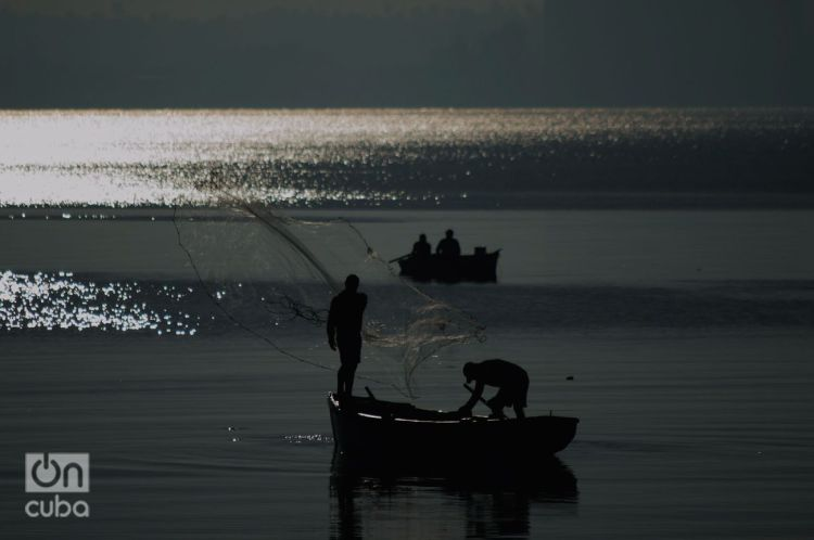 Fishermen in the bay of Matanzas. Photo: Otmaro Rodríguez.