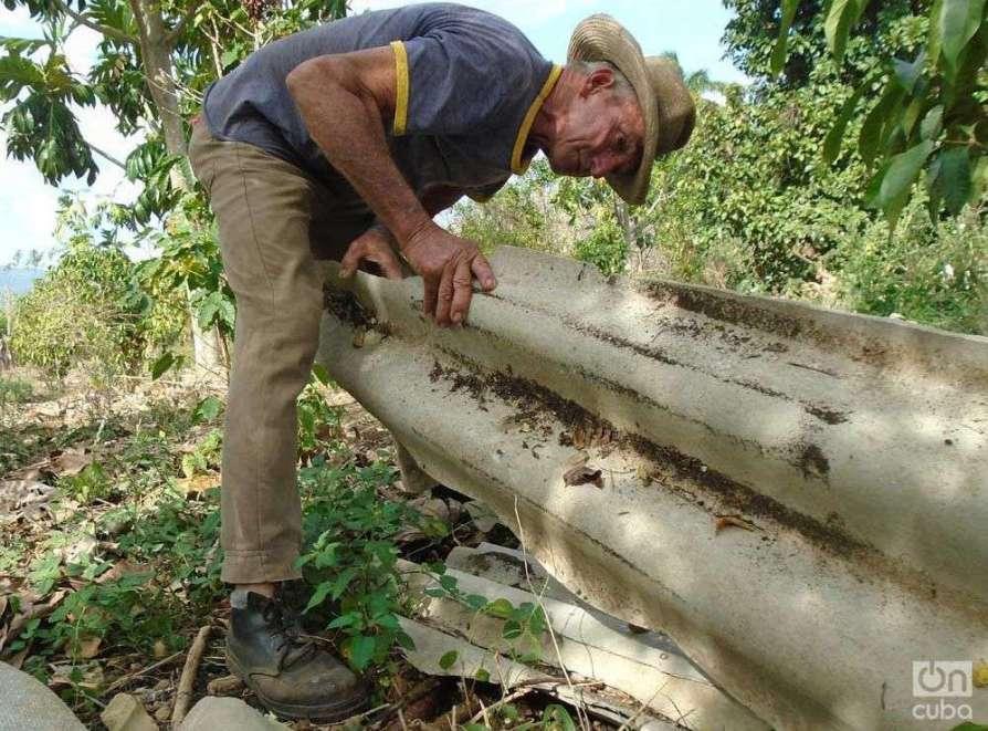 Bajo estas planchas de asbesto cemento, ubicadas en un rincón de su finca, se reproducen sus alacranes. Foto: Ronald Suárez..