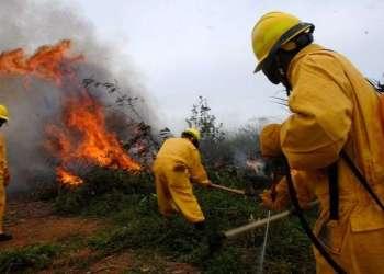 El período enero-mayo es el más propicio para los incendios forestales en Cuba. Foto: Agustín Borrego / Trabajadores.