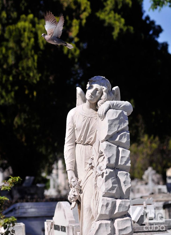 Colón Cemetery. Photo: Luis Gabriel.
