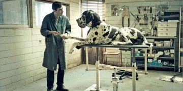 """Dogman"", de Matteo Garrone."
