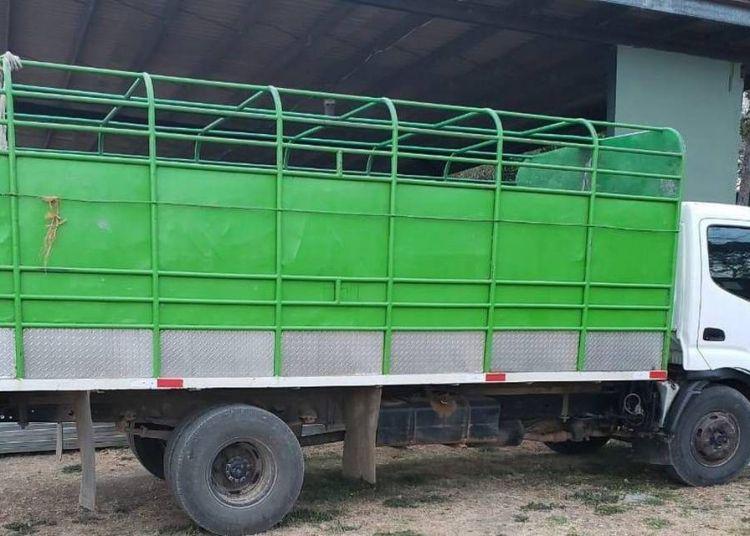 Camión en que viajaban ocultos seis migrantes cubanos fueron interceptados por las autoridades de Panamá. Foto: Servicio Nacional de Fronteras de Panamá (Senafront).