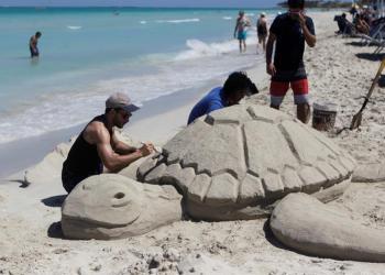 Una tortuga de arena en Varadero, playa declarada por Tripadvisor como la segunda mejor del mundo. Foto: Yander Zamora / EFE.