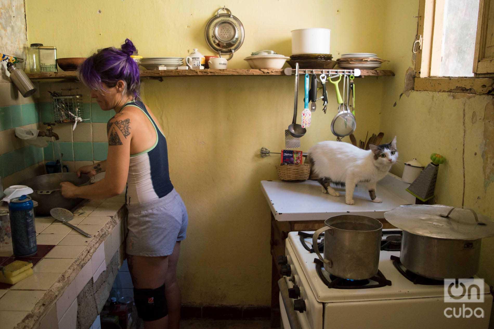 Lis Núñez en la cocina de su casa en Guanabacoa mientras prepara comida para los gatos de su refugio. Foto: Otmaro Rodríguez.