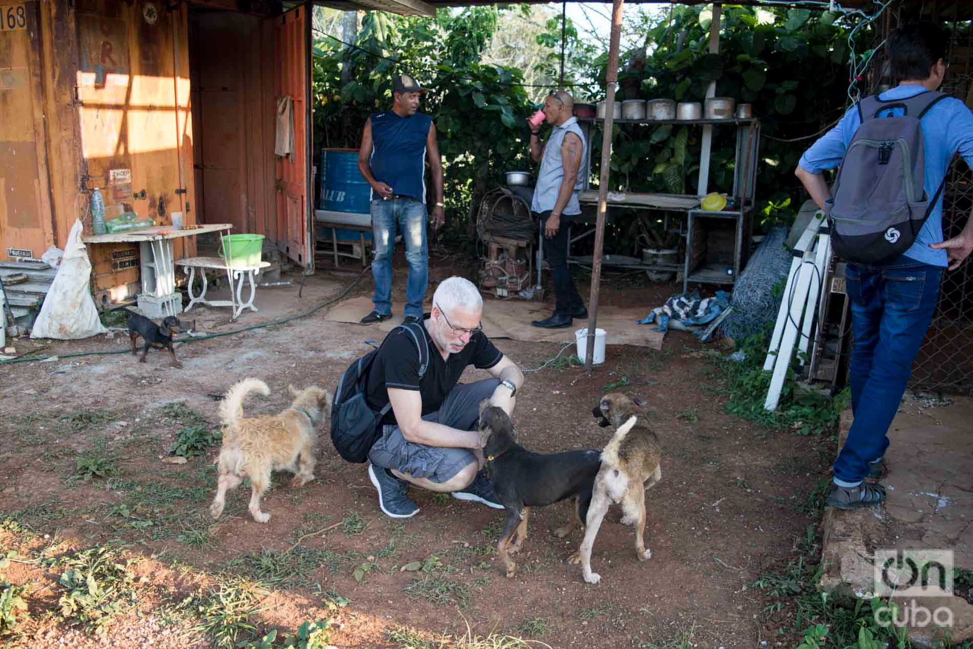 David Guggenheim (agachado), fundador y director de Ocean Doctor, en el refugio de perros de Venus y Ernesto al oeste de La Habana. Foto: Otmaro Rodríguez.