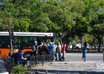 Una parada del Parque de la Fraternidad. Foto: Otmaro Rodríguez.