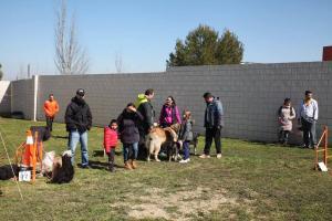El Centro de Protección Animal mejora sus instalaciones