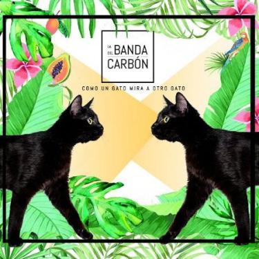 'Como un gato mira a otro gato' el nuevo álbum de La Banda del Carbón