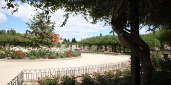 El Ayuntamiento comienza los tratamientos contra las plagas en las zonas verdes