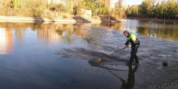 Vaciado y limpieza del Lago del Parque de Loranca