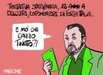 #BerlusconiFuoriDalleIstituzioni  #TrattativaStatoMafia  #SalviniMollaIlDelinquente 