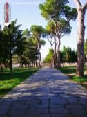 Immagine tratta da repertorio di Onda Lucana®by©Antonio Morena 2019 Atella Viale Storico