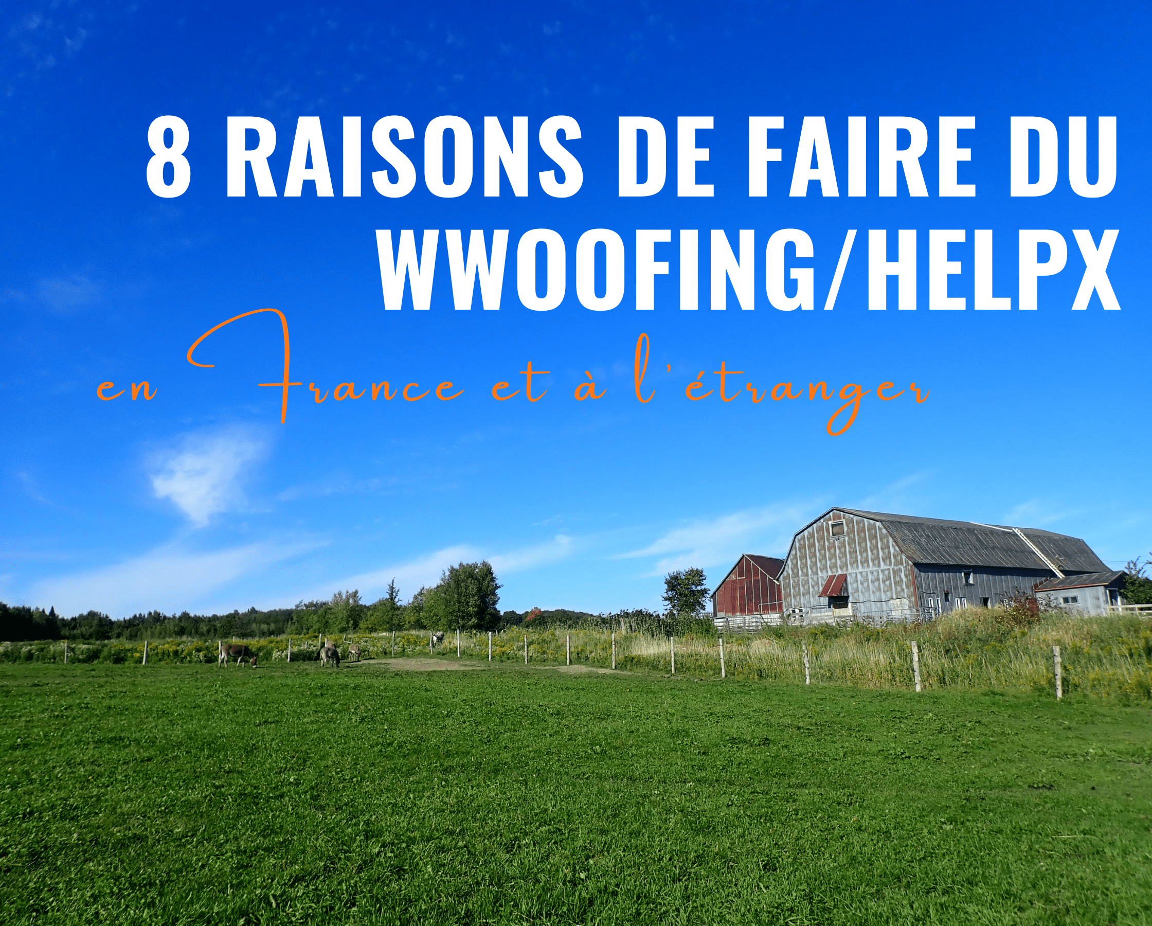 8 raisons de faire du wwoofing ou du HelpX